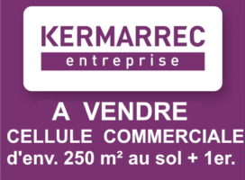 achat Local Commercial 250 m² SENE 56